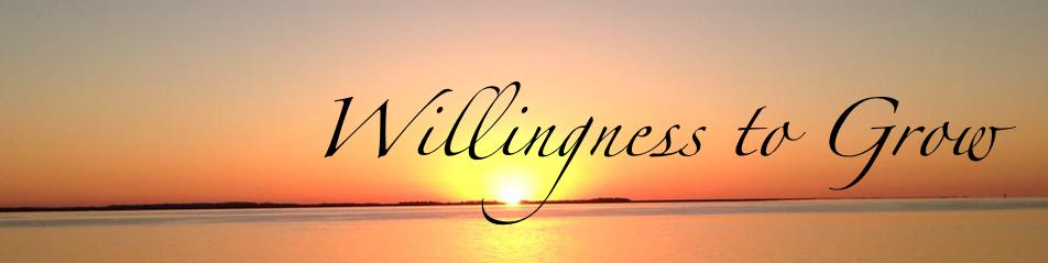 willingnesstogrow.com